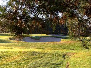 Strathfield Golf Course