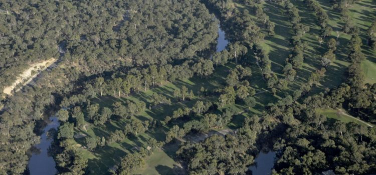 Remodelling existing golf courses: Yarra Bend GC