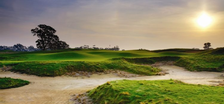 The Basics of Bunkers