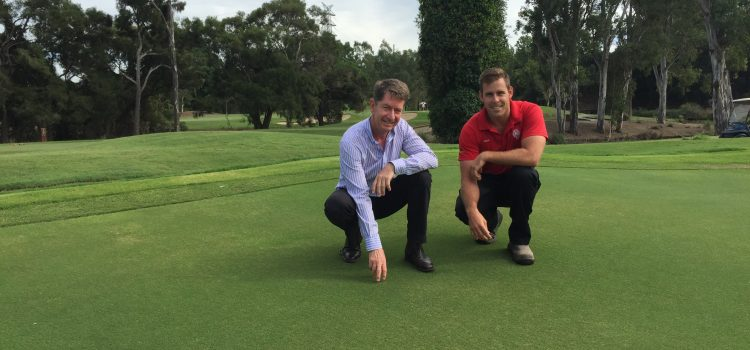 Brisbane's new greens have best warm weather grass in Australia