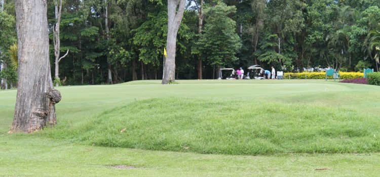 Cairns Golf Club trials one-tee policy