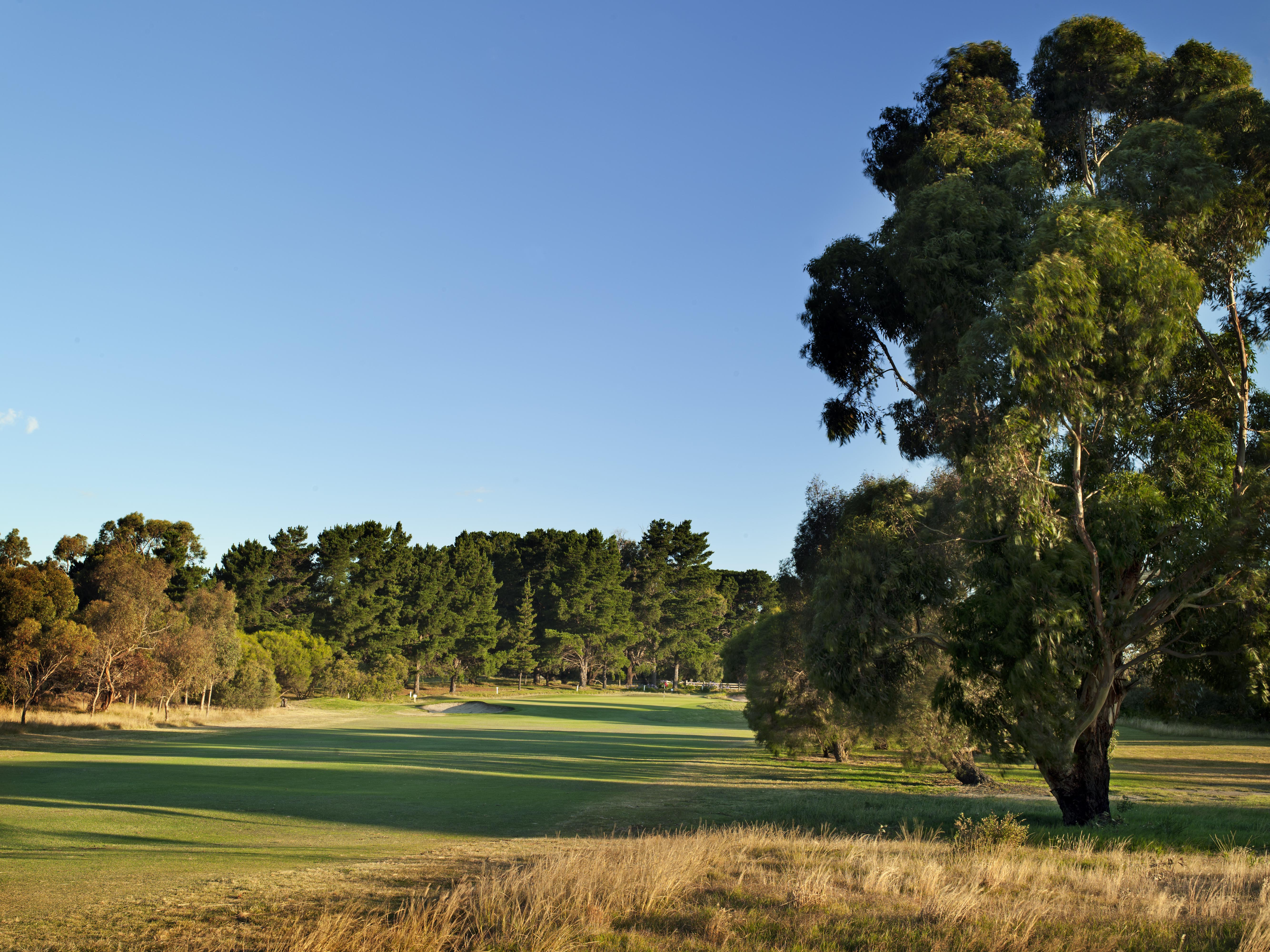 Curlewis, Hole 6