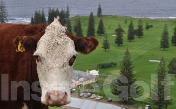 Norfolk Island – A Bounty of treasures awaits