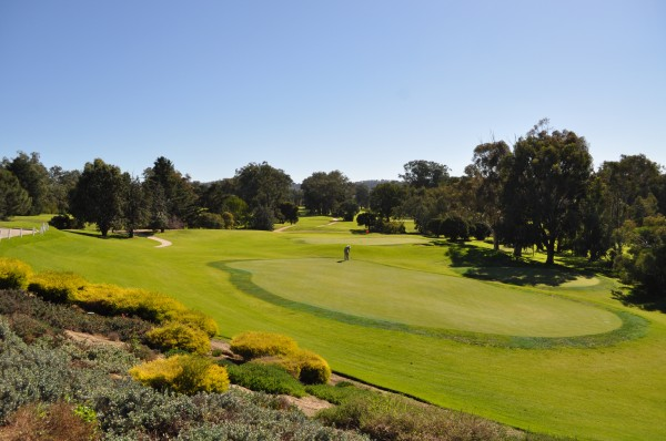 Commercial Club Golf Resort Albury