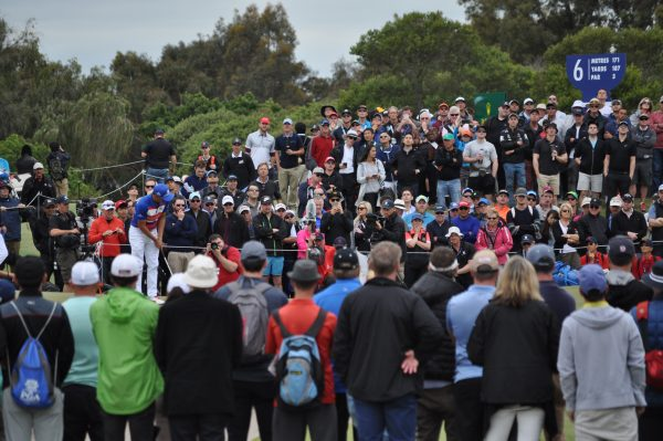 Strong and cheerful galleries at Kingston Heath