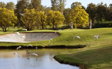 Club of the Month: McLeod Country Golf Club