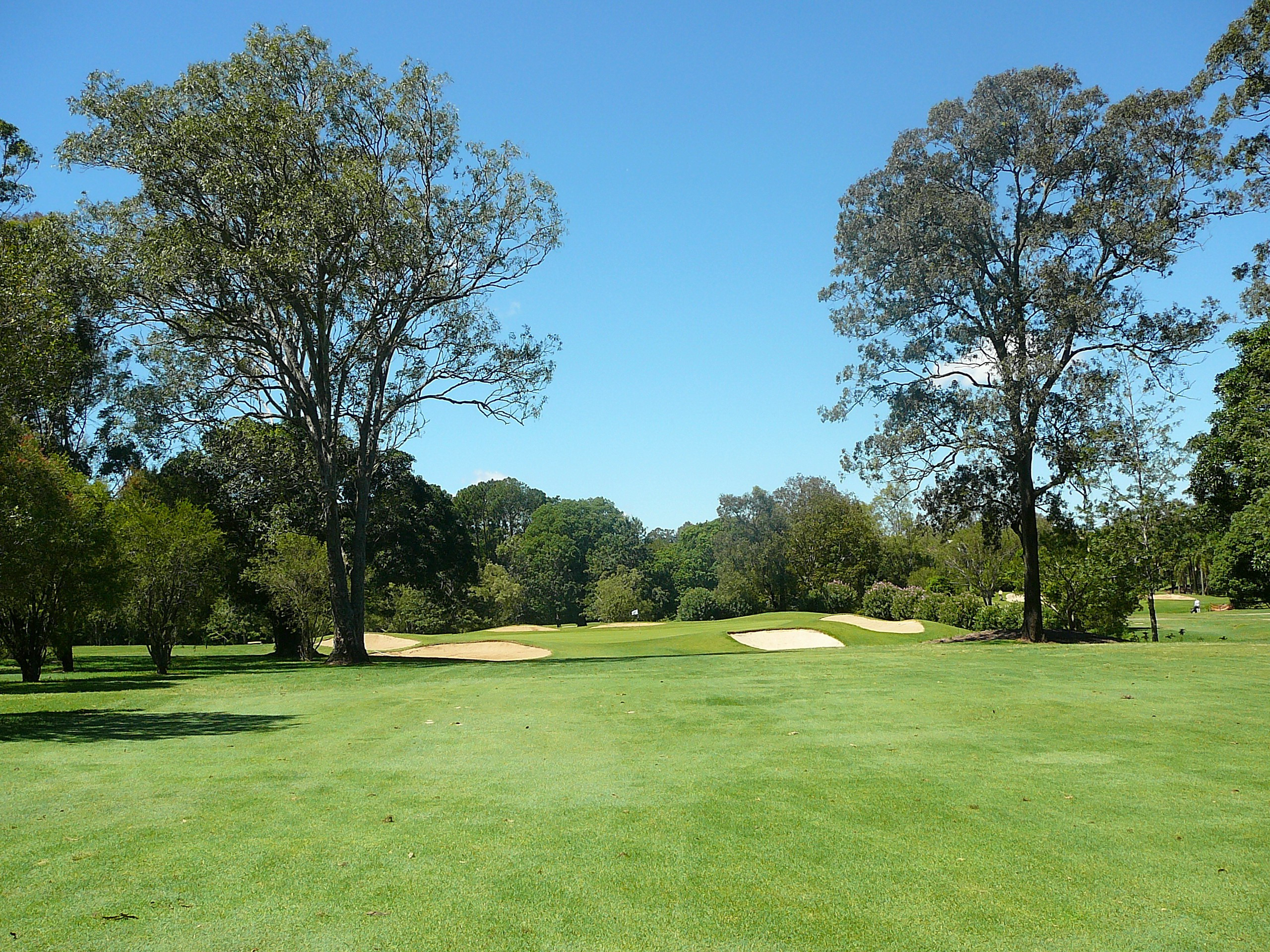 Pacific 12 Green Front