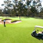 Golf on the Murray: Barham