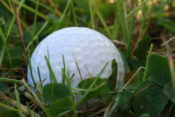 Golf Ball Rough