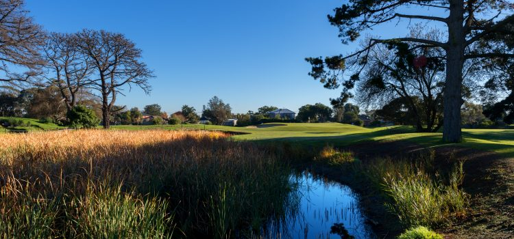 Club of the month: Rossdale Golf Club