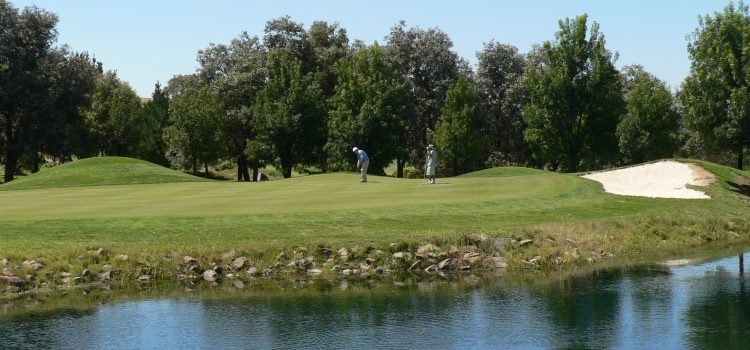 Troon International appointed by Canberra's Gold Creek