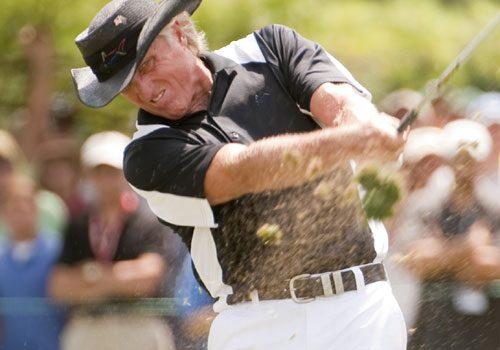 The Biomechanics of golf
