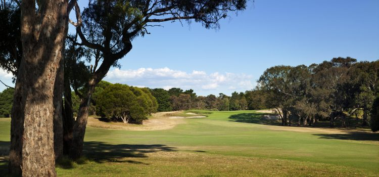 Club of the Month: Curlewis Golf Club