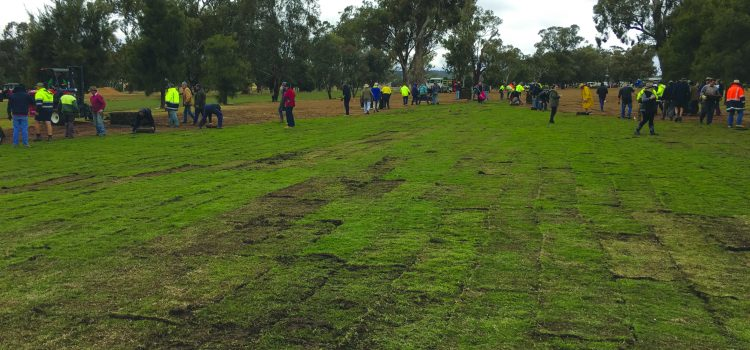 Volunteers make a difference at Dunedoo