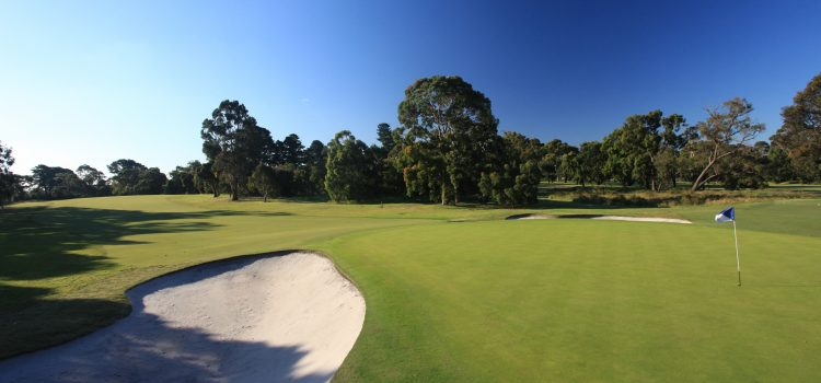 Club of the month: Cranbourne Golf Club
