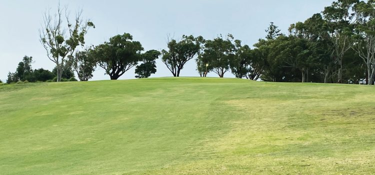 NEWS FROM THE SOCIETY OF AUSTRALIAN GOLF COURSE ARCHITECTS