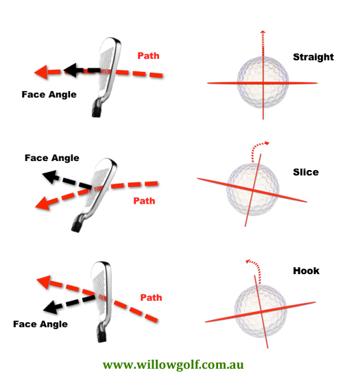 Path versus Face differences and corresponding spin axis tilts