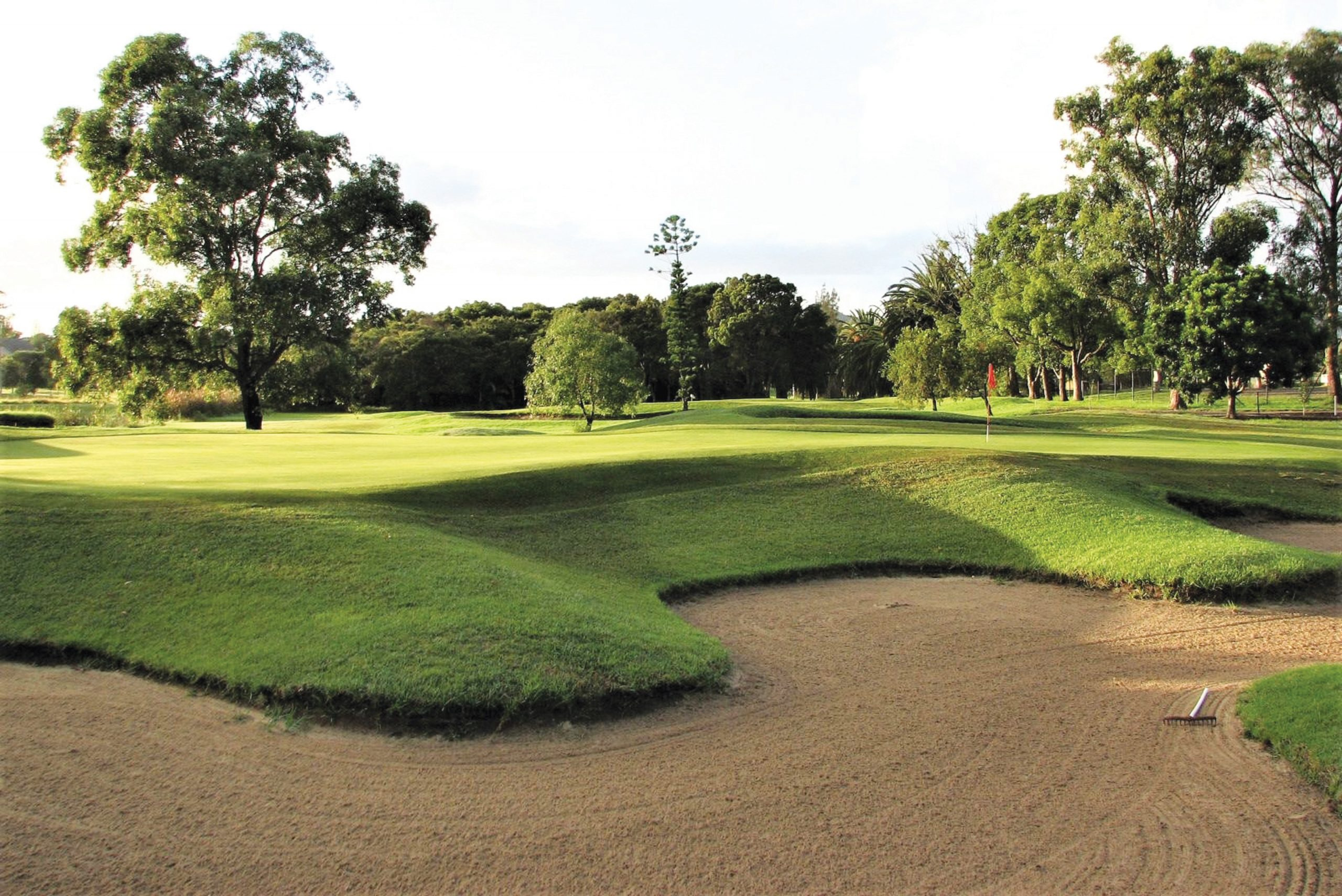 Waratah-Golf-Club-4th-green