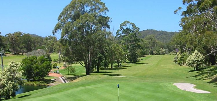 Club of the Month: Nelson Bay surges back
