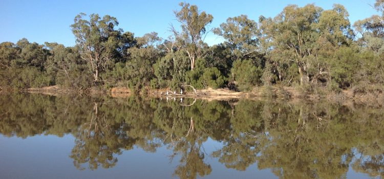 Murray River Magic 2015